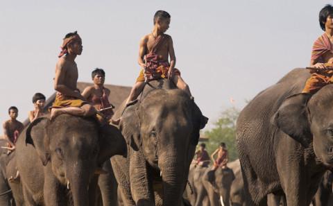 45 - Attraversare l'Asia su un elefante
